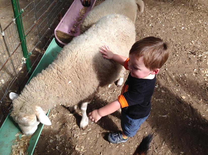 2013-10-20_Green Meadows Farm 035