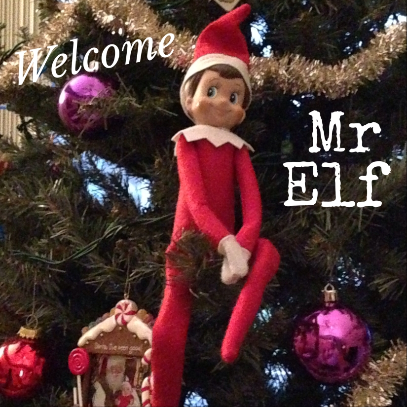 2013-12-01_Mr Elf Debuts
