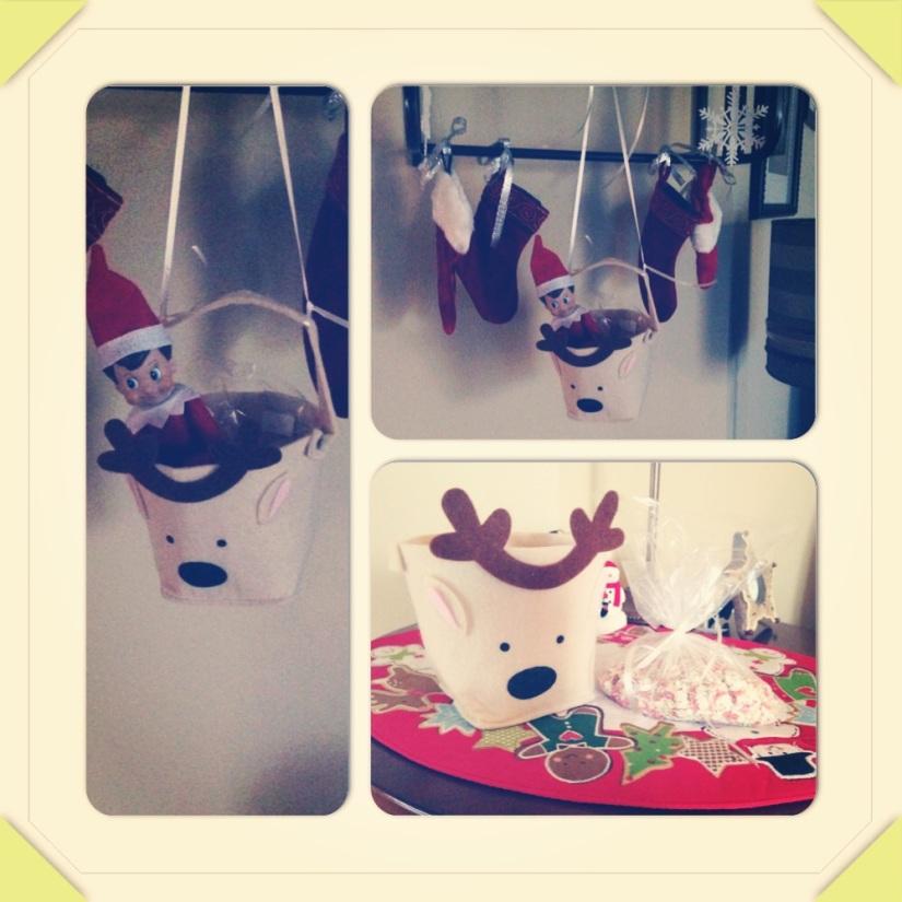 2013-12-24_Mr Elf_Reindeer Food 004