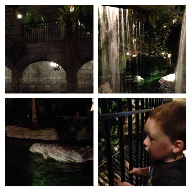 2014-03-01_Gaylord Palms Collage