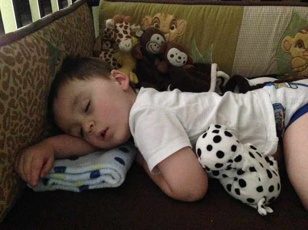 2014-03-09_sleeping prince