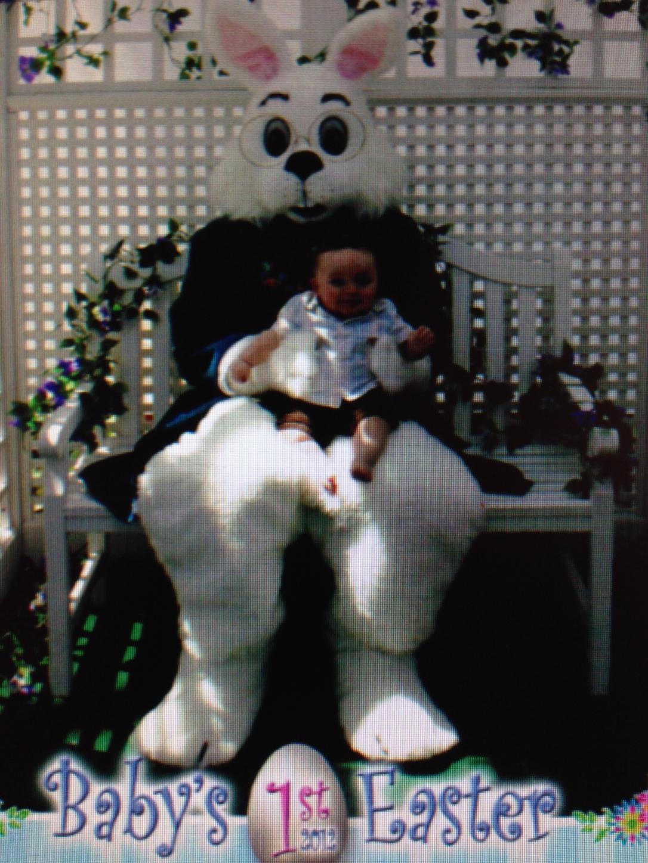 Liam Bunny Pic