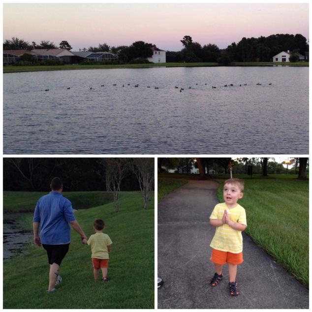 2014-08-28_family walk 008