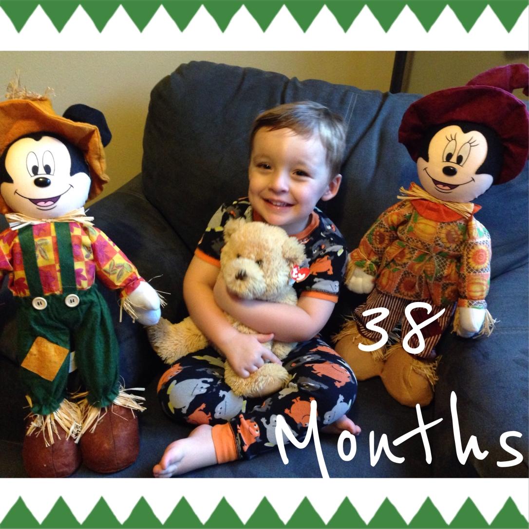 2014-09-28_38 months teddy bear pic