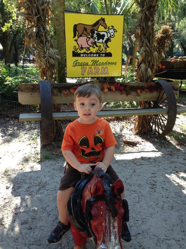 2014-10-19_Green Meadows Farm 001