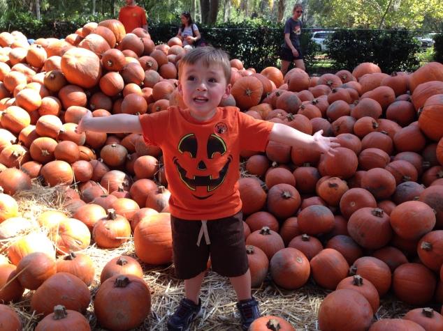 2014-10-19_Green Meadows Farm 064