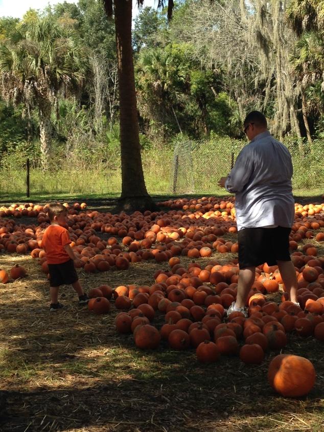 2014-10-19_Green Meadows Farm 069