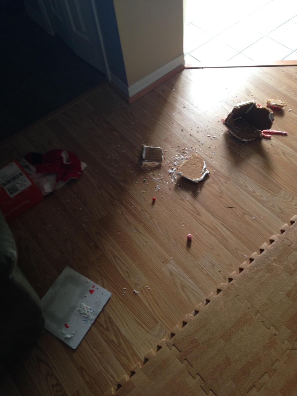 2014-12-09_Boo Strikes Ginger 3