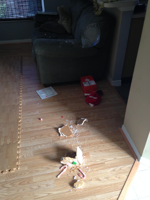 2014-12-09_Boo Strikes Ginger 4