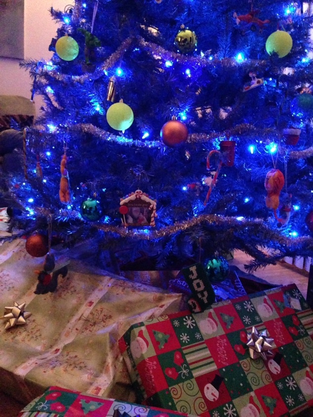 2014-12-25_Christmas 008