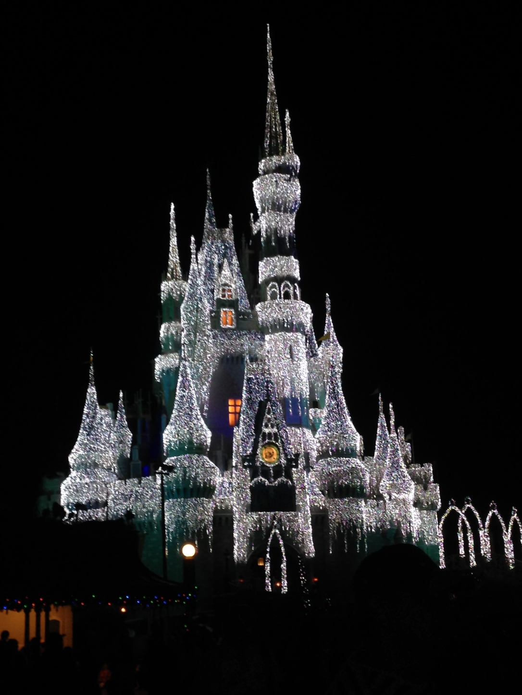 2015-01-03_Magic Kingdom_Castle_Frozen