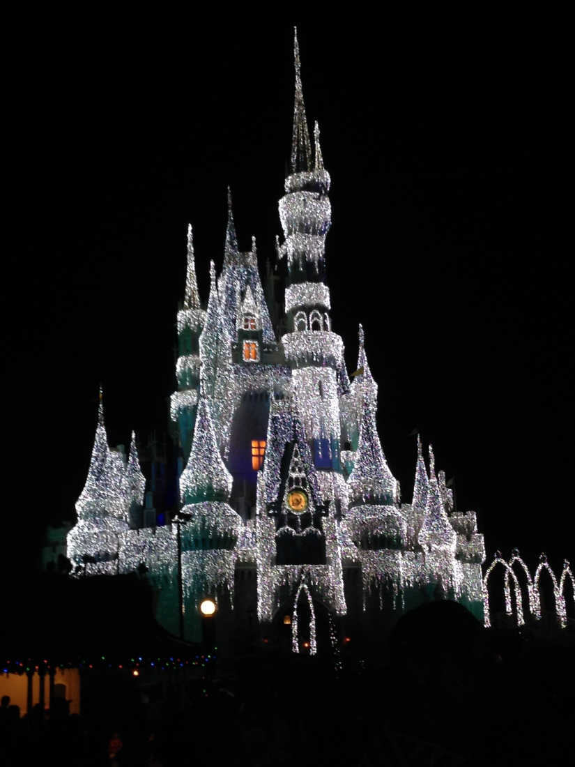 2015-01-03_Magic Kingdom_Castle_Frozen