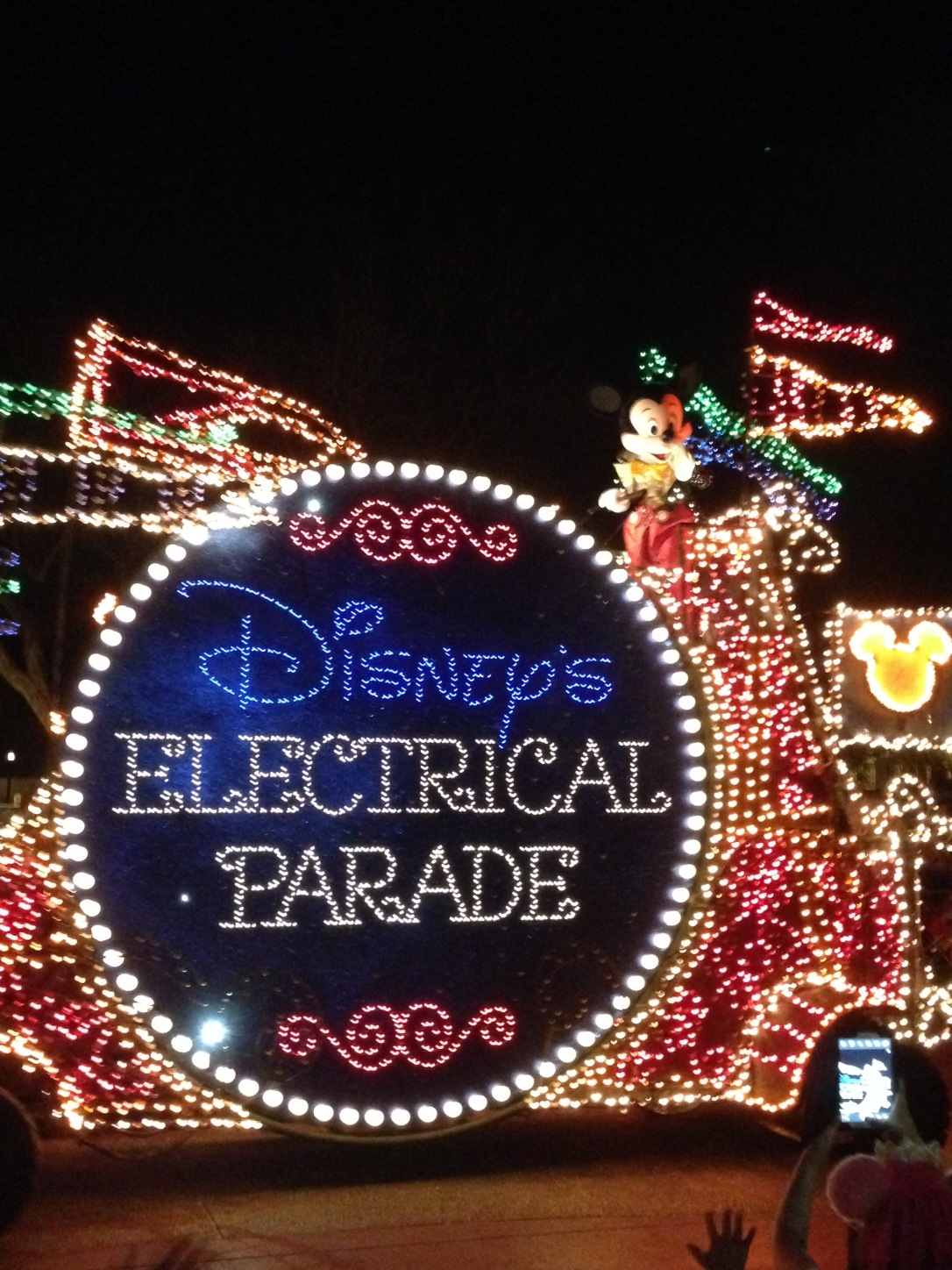2015-01-03_Magic Kingdom_Electrical Parade2