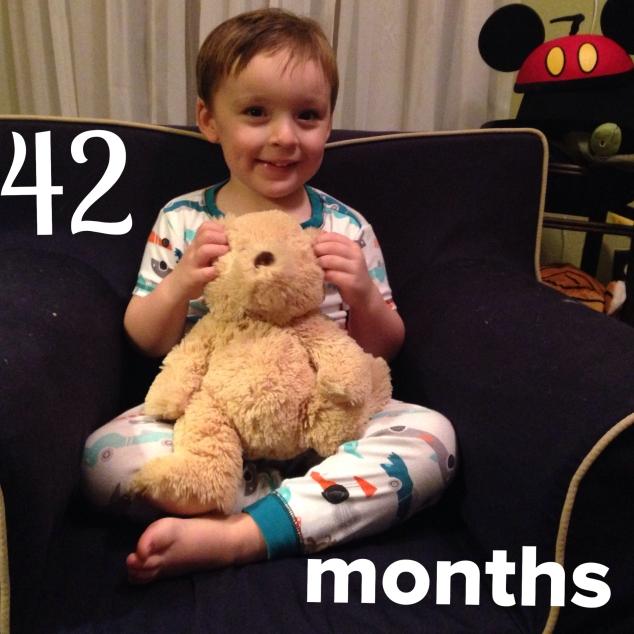 2015-01-28_42 months teddy bear pic