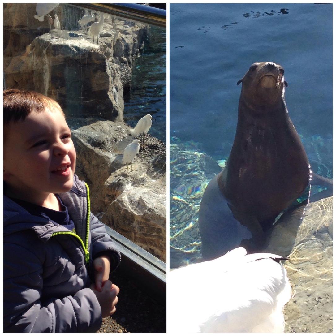 2015-02-14_Sea World 1st Visit 027
