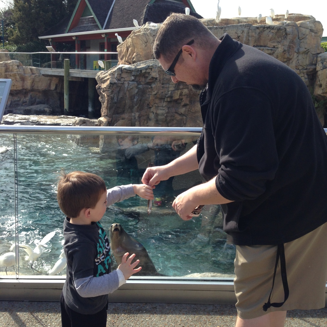 2015-02-21_Sea World 002