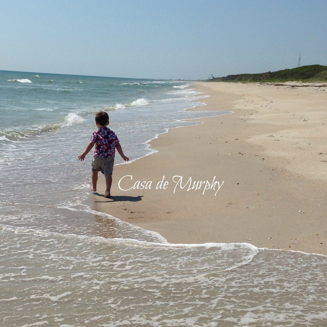 2015-05-22_Titusville Beach Walk 015EDITED