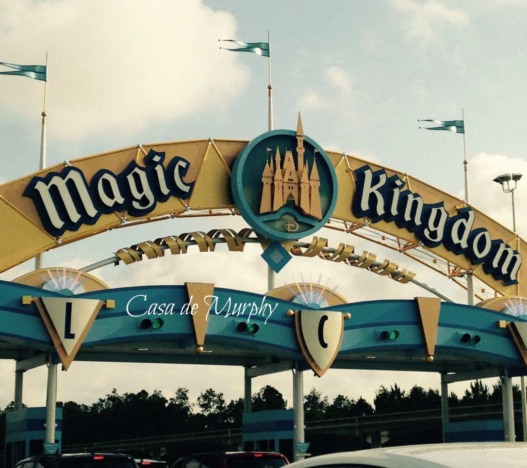 2015-05-24_magic kingdomEDITED