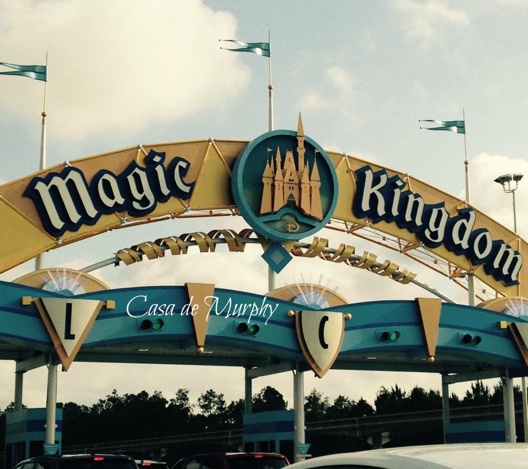 2015-05-24_magic kingdomEDITED