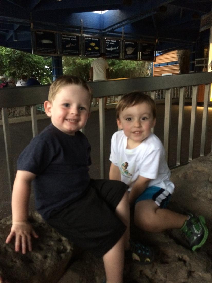 2015-06-20_SeaWorld Brandon and Liam