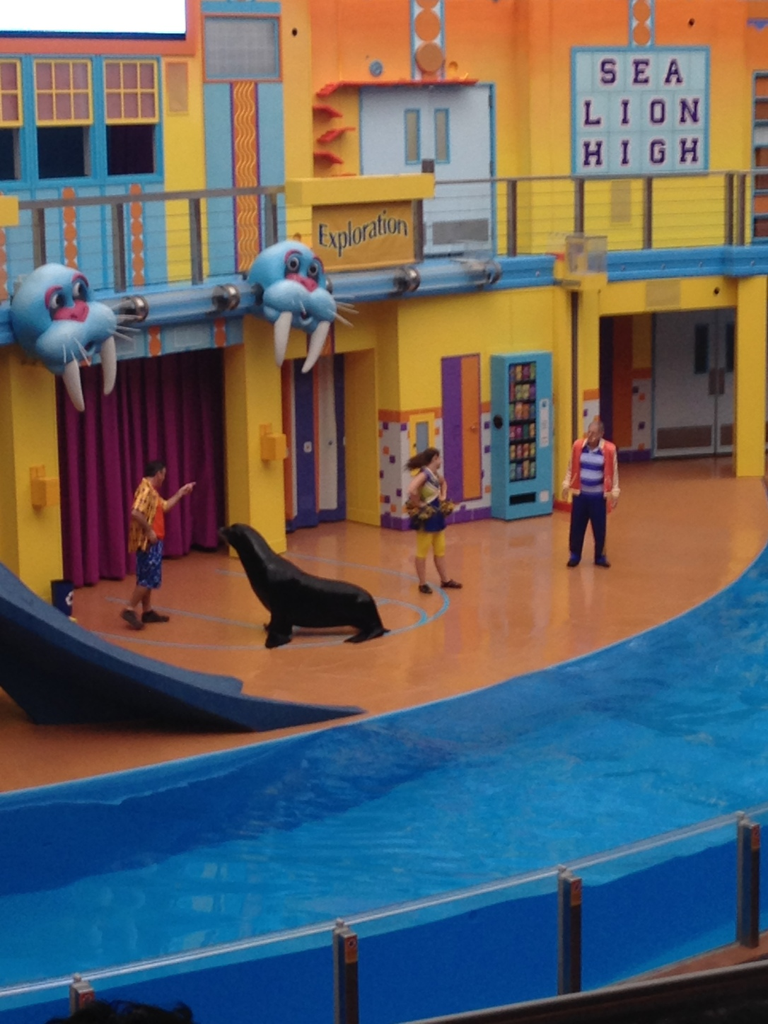 2015-06-20_SeaWorld SeaLion Show