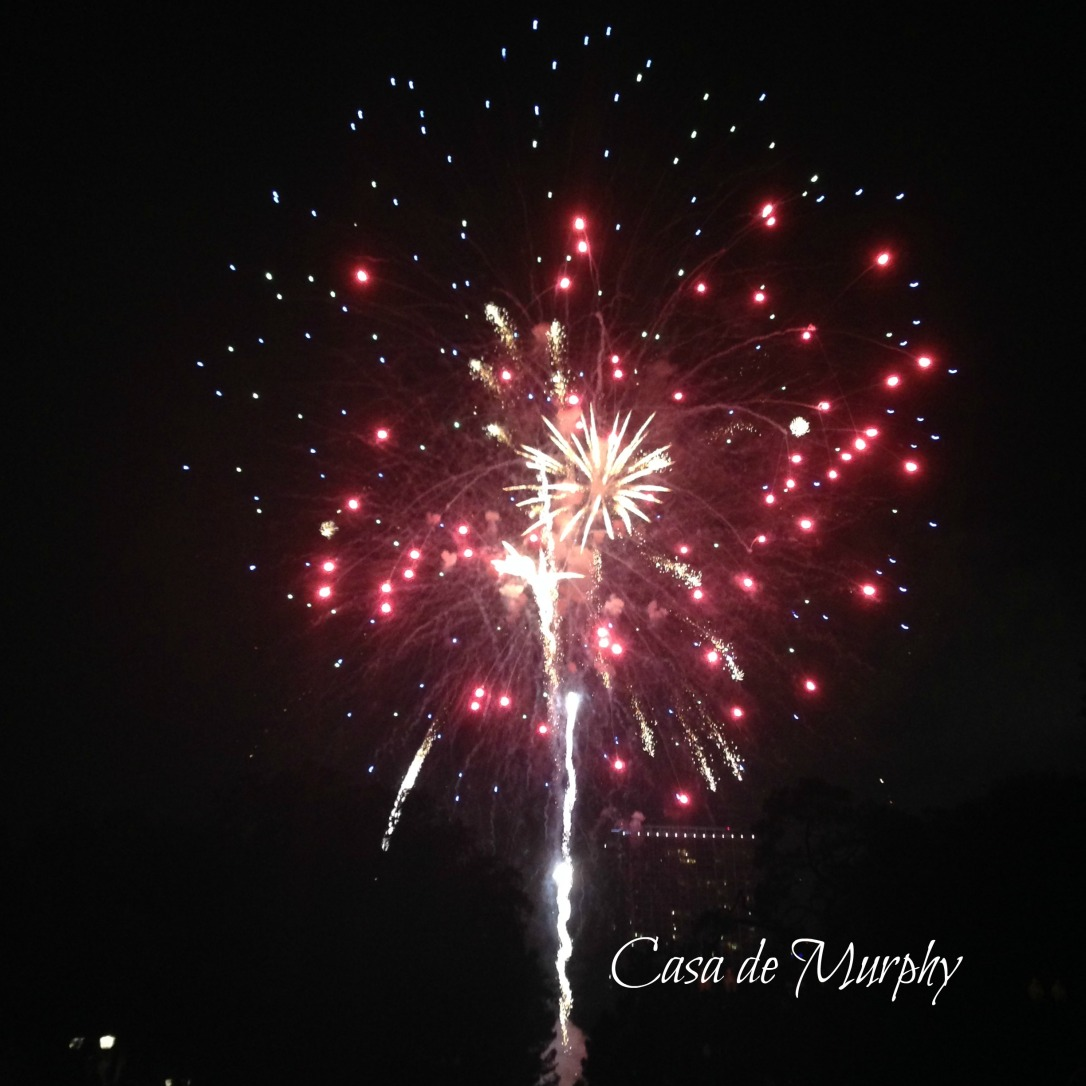 2015-07-04_Lake Eola Fireworks EDITED