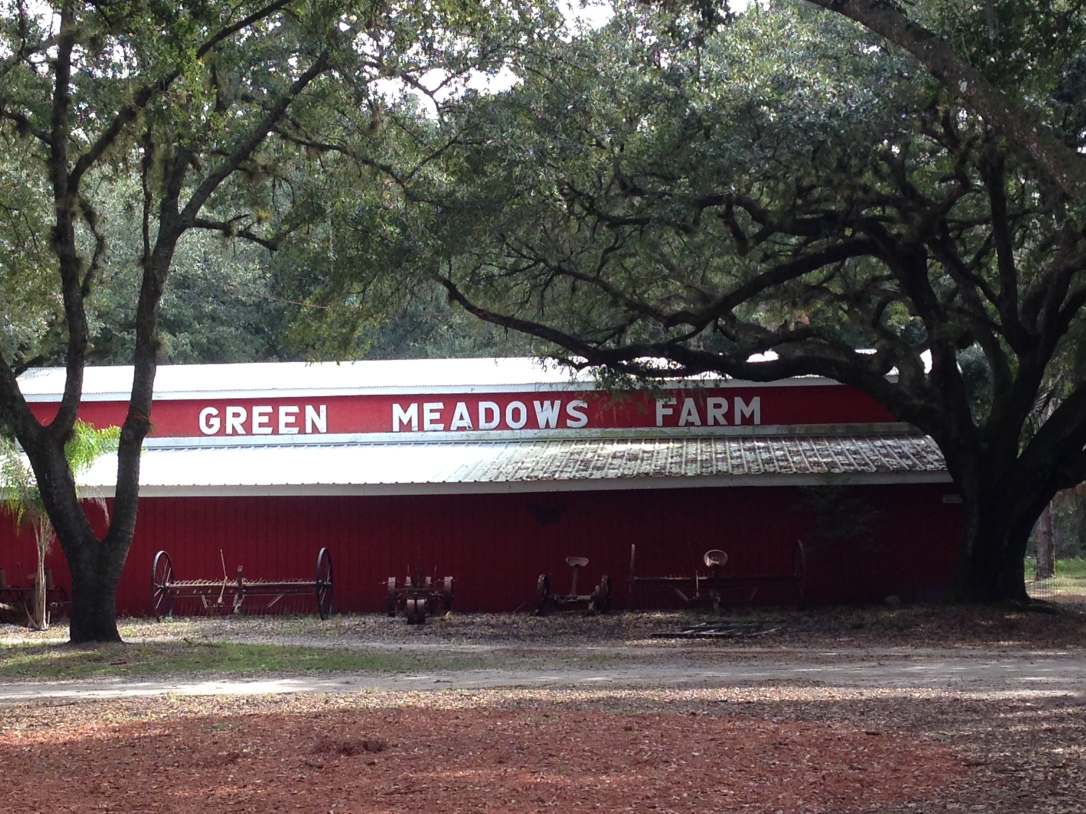 2015-10-18_Green Meadows 28