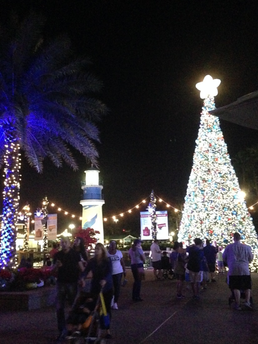 2015-12-26_Sea World 001