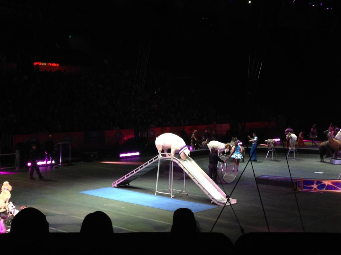 2016-01-16_Ringling Circus Legends 025