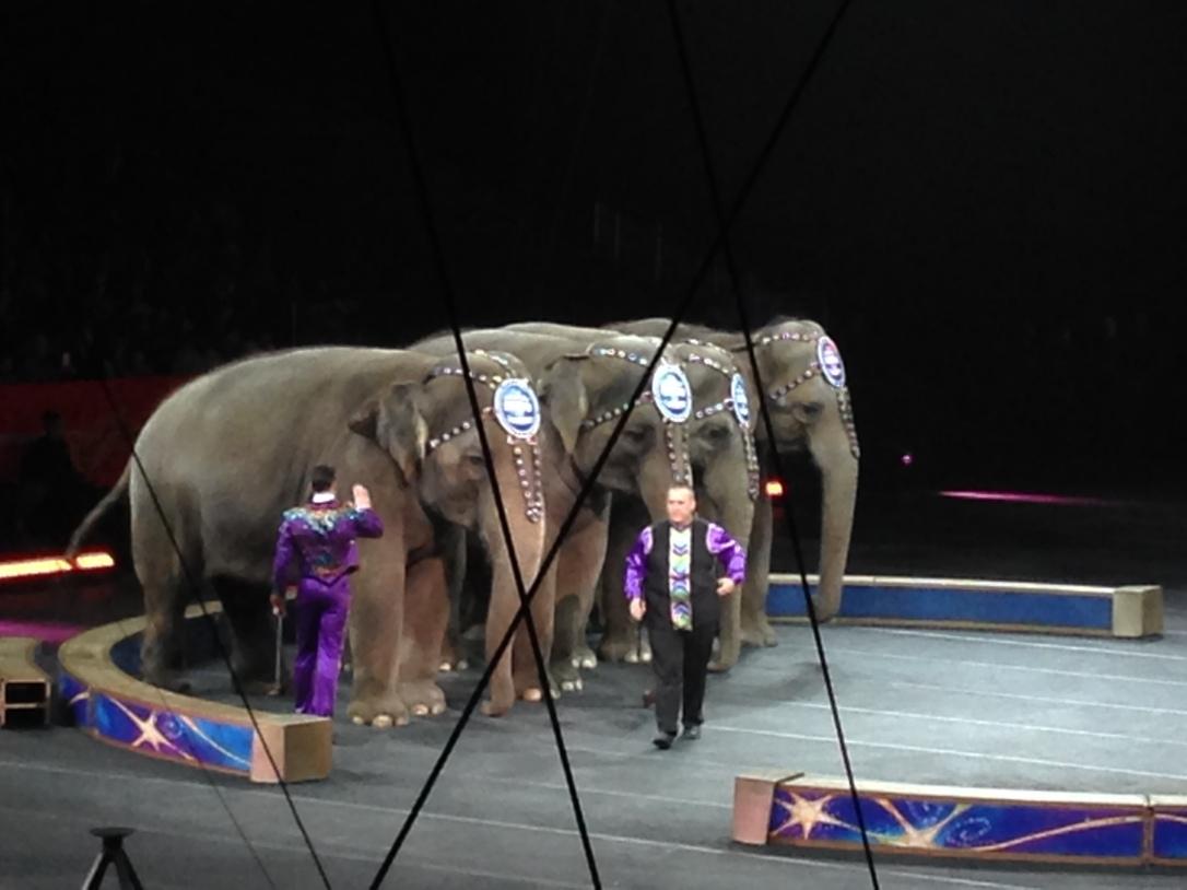 2016-01-16_Ringling Circus Legends 037