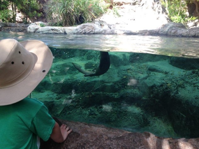 2016-04-10_Central FL Zoo 005