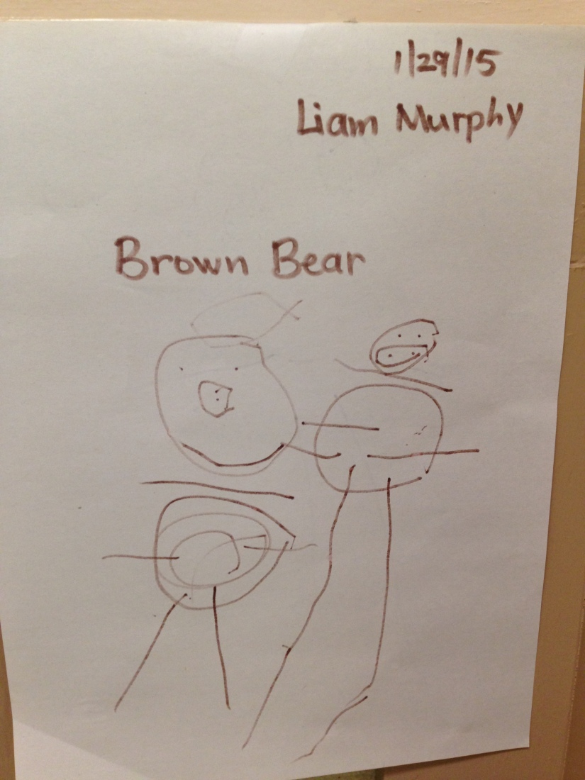 2015-01-29_brown bear_1st drawing