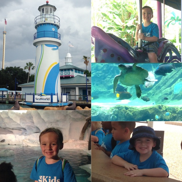 2016-07-13_KRK Junior Camp Sea World 001