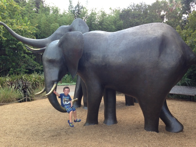2016-07-31_Jacksonville Zoo_Liam 5th Bday 018