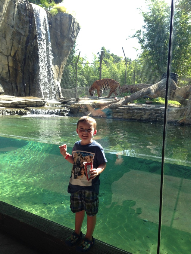 2016-07-31_Jacksonville Zoo_Liam 5th Bday 048