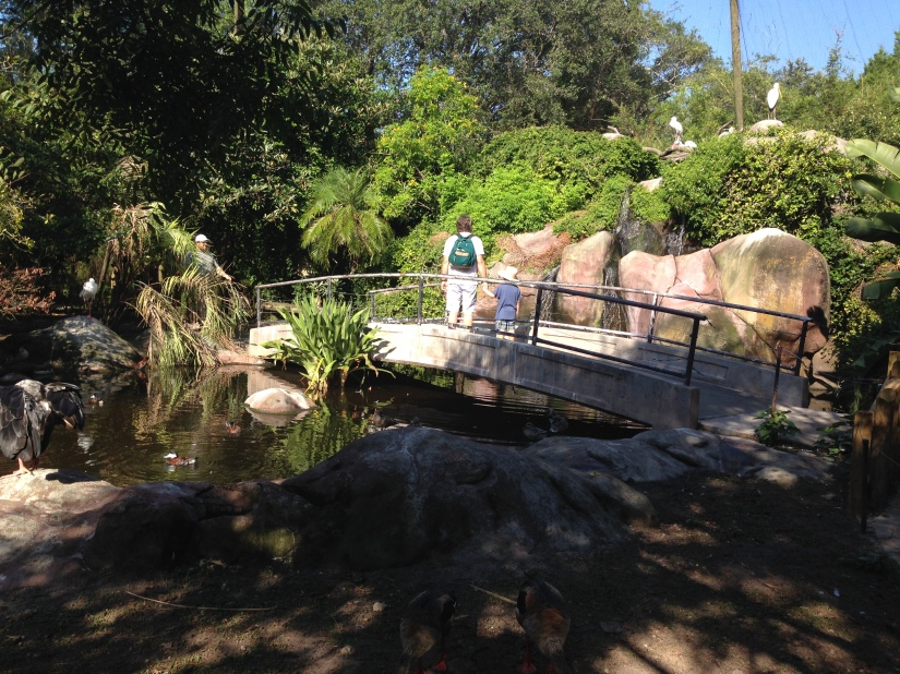 2016-07-31_Jacksonville Zoo_Liam 5th Bday 059